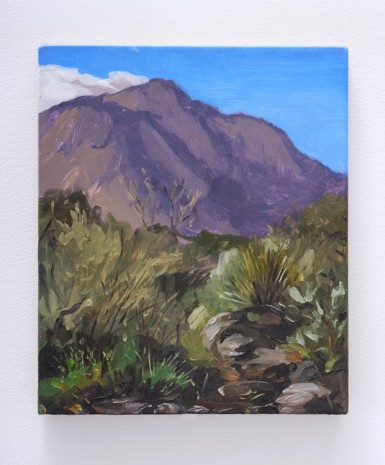 Van Hanos, Chisos Basin (October trip 4/4), 2018 , Lisson Gallery