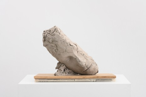 Mark Manders, Study for Large Tilted Head, 2017-18 , Tanya Bonakdar Gallery