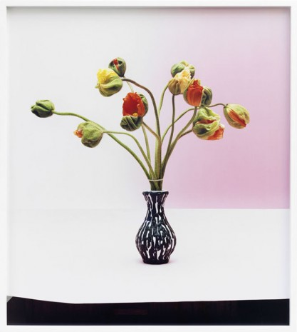 Annette Kelm, Untitled, 2012, Marc Foxx (closed)