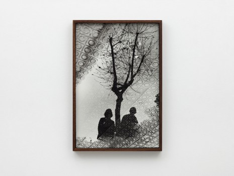 Ed Templeton, Barcelona puddle reflection tree, 2012, 2019 , NILS STÆRK
