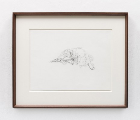 Stephen McKenna, Lying Dog, 1984, Kerlin Gallery