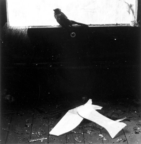 Ralph Eugene Meatyard, Untitled - Bird on Window Ledge, 1966 , Howard Greenberg Gallery