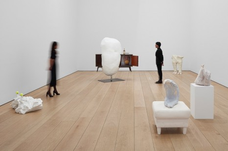 Erwin Wurm, Yes Biological, Lehmann Maupin