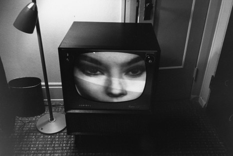 Lee Friedlander, Little Screens, Luhring Augustine