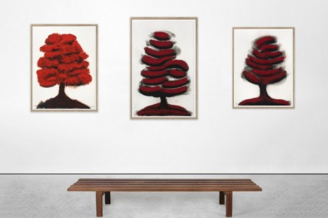 David Nash, Trees, Galerie Lelong & Co.