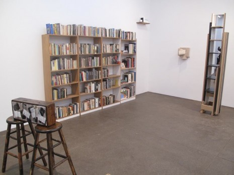 Richard Artschwager, Tauba Auerbach, John Baldessari, Steven Baldi, Erica Baum..., The Feverish Library, Petzel Gallery