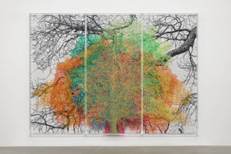Charles Gaines, Multiples of Nature, Trees and Faces, Hauser & Wirth