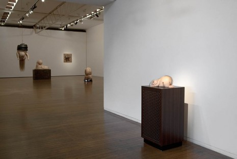 Patricia Piccinini, I have spread my dreams under your feet, Roslyn Oxley9 Gallery