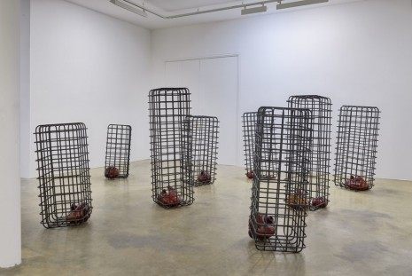 Mona Hatoum, Reflection, Galerie Chantal Crousel
