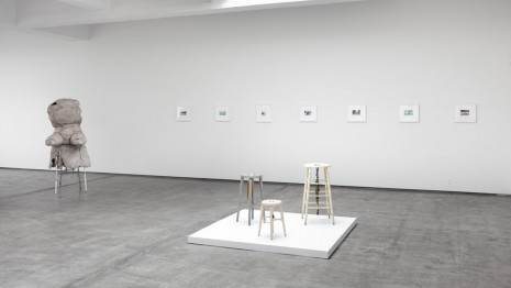 Group show, Dissolving Margins, Paula Cooper Gallery