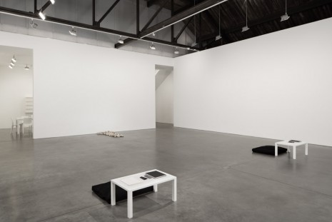 Yoko Ono, THE RIVERBED, Andrea Rosen Gallery
