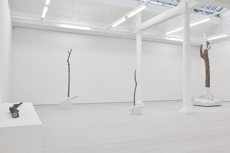 Giuseppe Penone, Fui, Sarò, Non Sono (I was, I will be, I am not), Marian Goodman Gallery