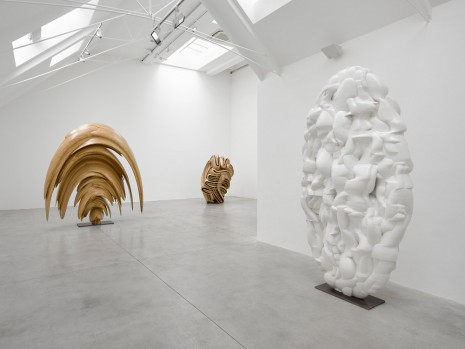 Tony Cragg, , Lisson Gallery