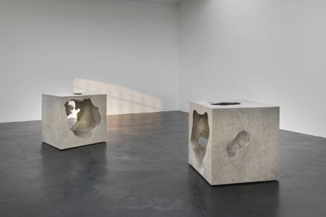 Olafur Eliasson, The presence of absence, neugerriemschneider