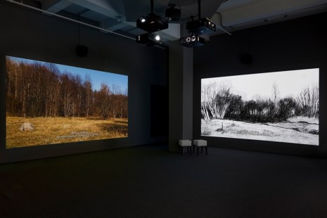 Eija-Liisa Ahtila, Studies on the Ecology of Drama, Marian Goodman Gallery