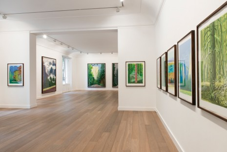 David Hockney, The Yosemite Suite, Galerie Lelong & Co.