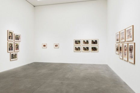 Ana Mendieta, Metamorphosis, Alison Jacques Gallery
