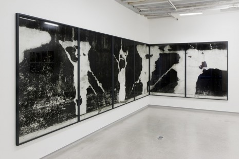 Lukas Hoffmann, Staring at the scenery, Galerie Bertrand Grimont
