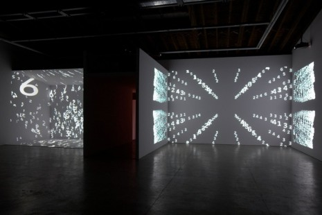 Charles Atlas, The Illusion of Democracy, Luhring Augustine Bushwick