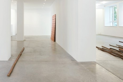 Ximena Garrido-Lecca, Lines of Divergence , Galerie Gisela Capitain