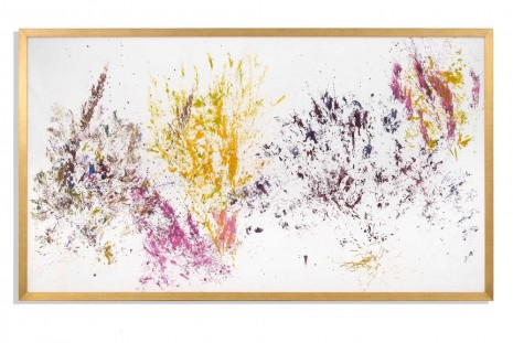 Maria Thereza Alves, Time, Trade and Surplus Value, Alfonso Artiaco