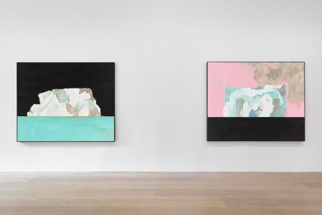 Harold Ancart, Freeze, David Zwirner